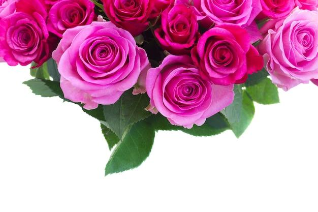 Boeket van roze en magenta verse rozen en bladerengrens die op witte achtergrond wordt geïsoleerd