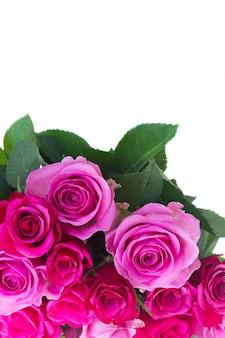 Boeket van roze en magenta verse rozen en groene bladeren close-up grens geïsoleerd op een witte achtergrond