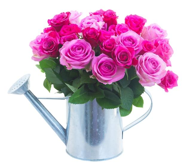 Boeket van roze en magenta verse rozen in gieter die op witte achtergrond wordt geïsoleerd