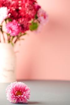Boeket van roze en rode asters en een grote roze aster op een grijs-roze achtergrond, een plek voor tekst. hoge kwaliteit foto