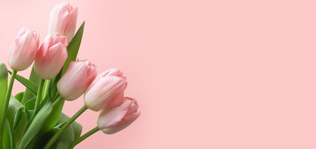 Boeket van roze tulp op roze achtergrond als banner, moederdag.