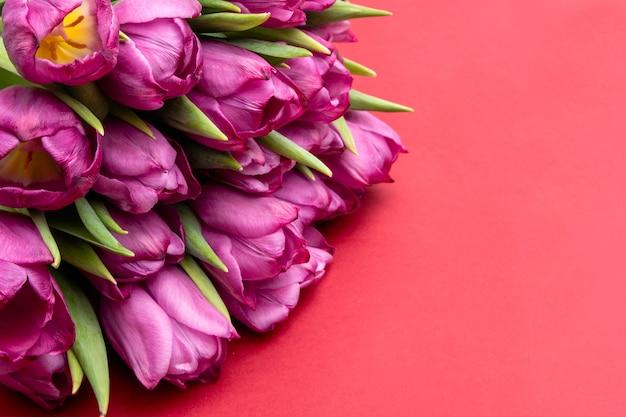Boeket van roze tulpen / pasen-dagachtergrond. boeket van tulpen op een rode achtergrond, webbanner