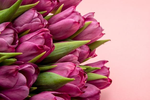 Boeket van roze tulpen / pasen-dagachtergrond. boeket van tulpen op een roze achtergrond, webbanner