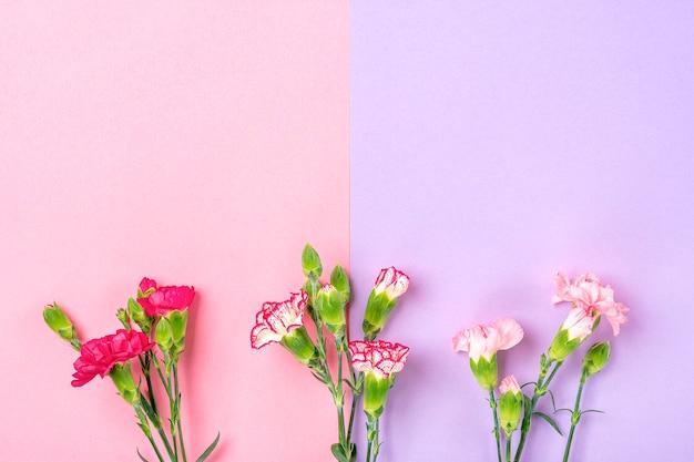 Boeket van verschillende roze anjerbloemen op dubbele kleurrijke achtergrond