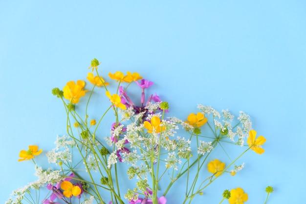 Boeket van wilde bloemen op blauwe muur