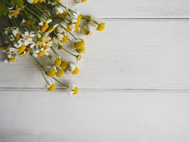 Boeket van wilde madeliefjes op witte houten achtergrond met kopie space