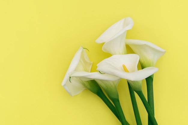 Boeket van witte calla lelie bloemen