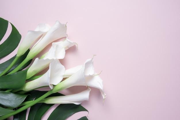 Boeket van witte calla lelies en monstera bladeren op roze