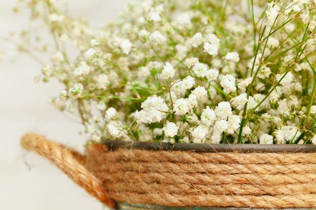 Boeket van witte gypsophila bloemen