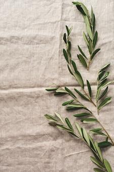 Boeket verse olijfboomtakken op een oude vintage grijze tafelkleedtafel. natuurlijk productconcept.