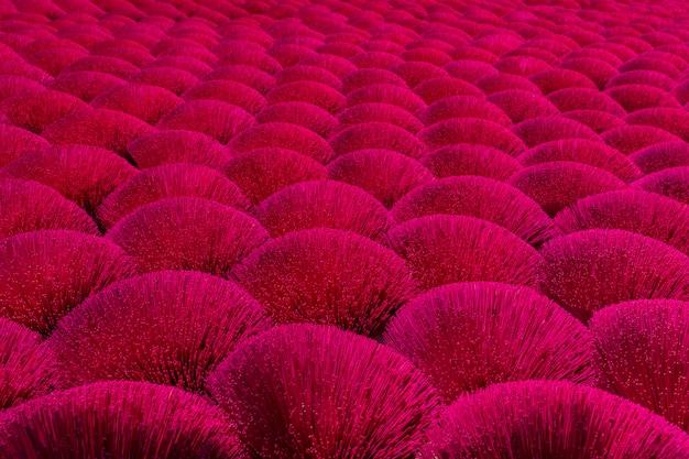 Boeketten van rode wierook droog in de zon in een veld