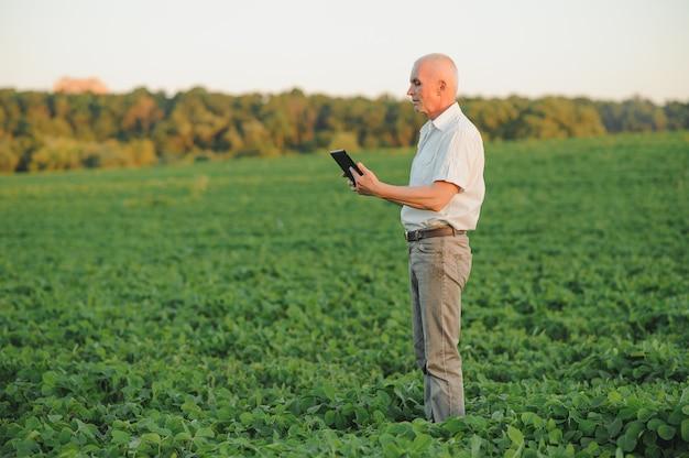 Boer agronoom in soja veld gewassen vóór oogst controleren