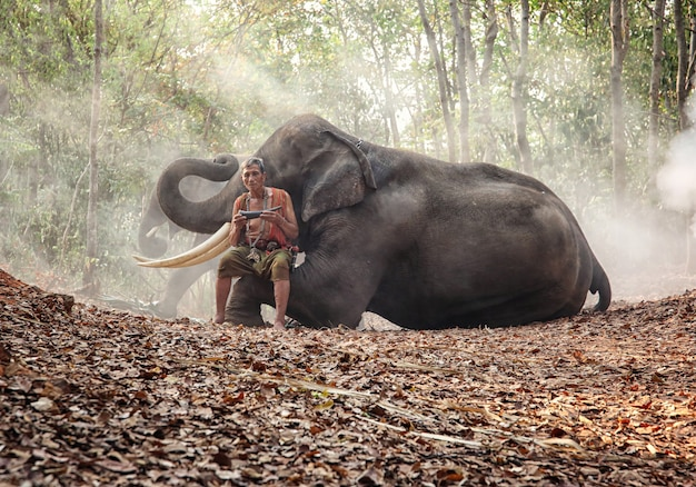 Boer en olifant aziatische cultuur