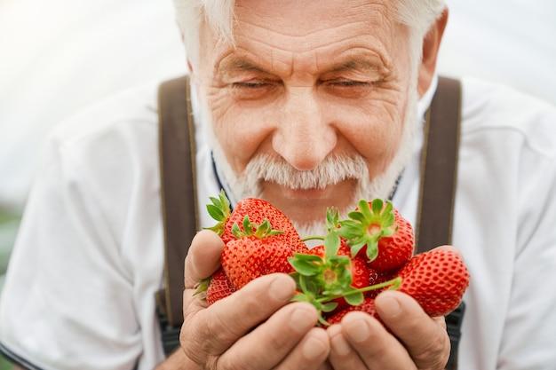 Boer geniet van de geur van verse aardbeien