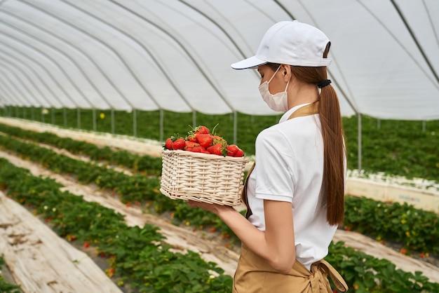 Boer in medisch masker met mand met aardbeien