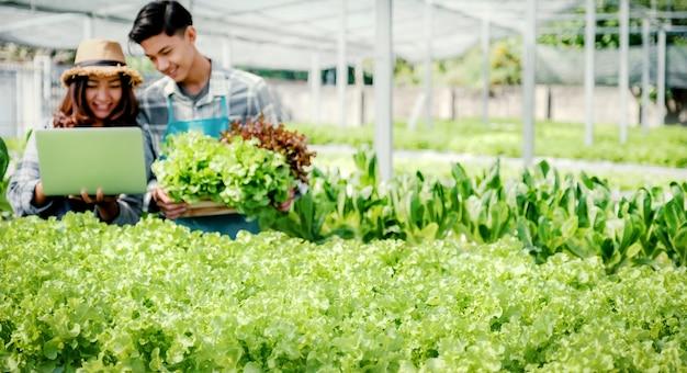 Boer inspecteert de kwaliteit van sla van hydrocultuurboerderij en noteert in de laptop