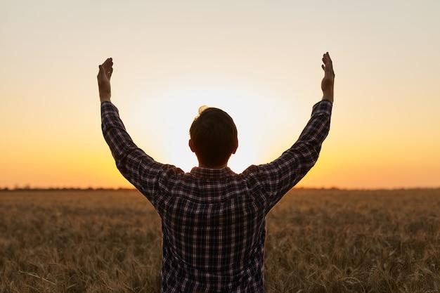 Boer, jonge knappe man die in een tarweveld staat en uitkijkt naar de zonsondergang, stak zijn handen omhoog naar de zon