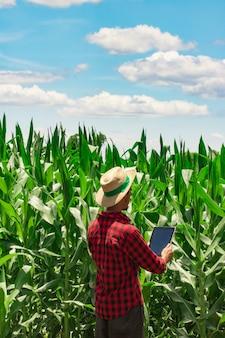 Boer met behulp van digitale tabletcomputer in gecultiveerde maïsveldplantage