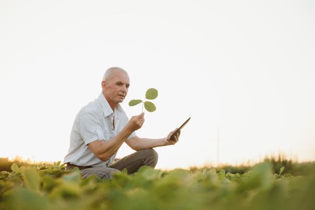Boer op sojabonenveld