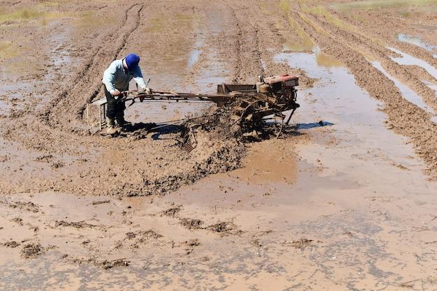 Boer ploegen in rijst veld bereiden plant rijst onder zonlicht