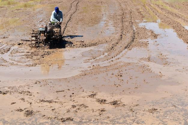 Boer ploegen in rijstveld bereiden plant rijst