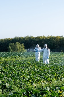 Boer sproeien van pesticiden veldmasker oogst beschermende chemische stof