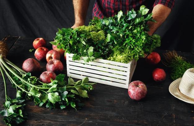Boer vers geplukt kruiden houten kist oogsten