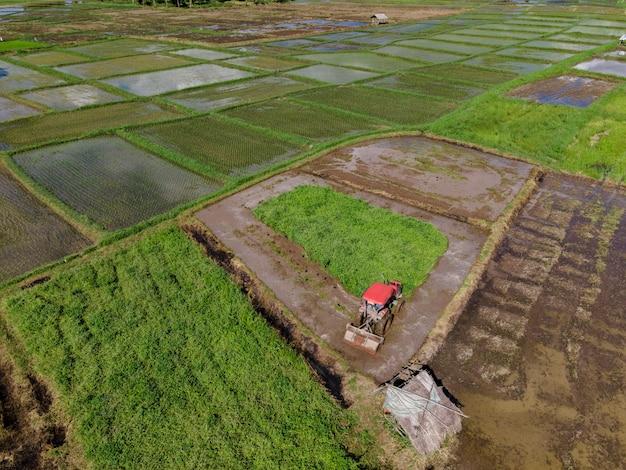 Boer werkt in rijstplantage met helmstok trekker.