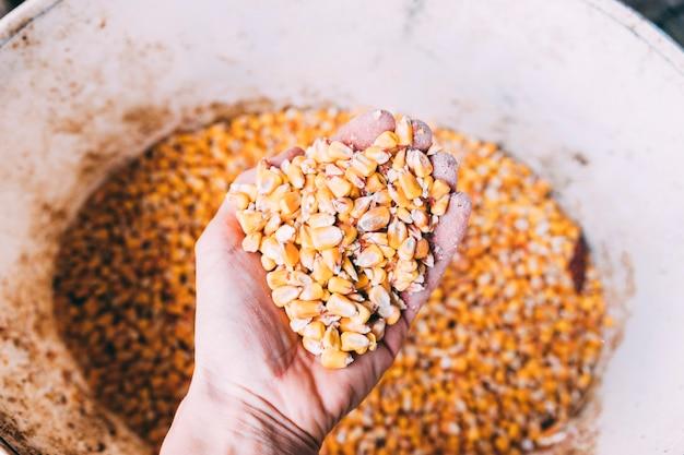 Boerderij concept met dierlijk voedsel