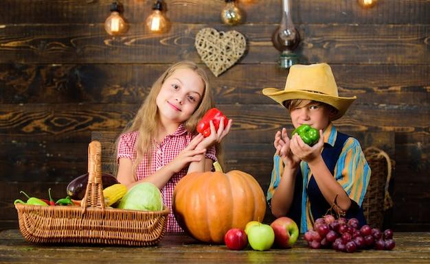 Boerderij markt. landbouw leert kinderen waar hun voedsel vandaan komt. kinderen boeren meisje jongen groenten oogst. familie boerderij. broers en zussen die plezier hebben. kinderen presenteren boerderij oogst houten achtergrond.
