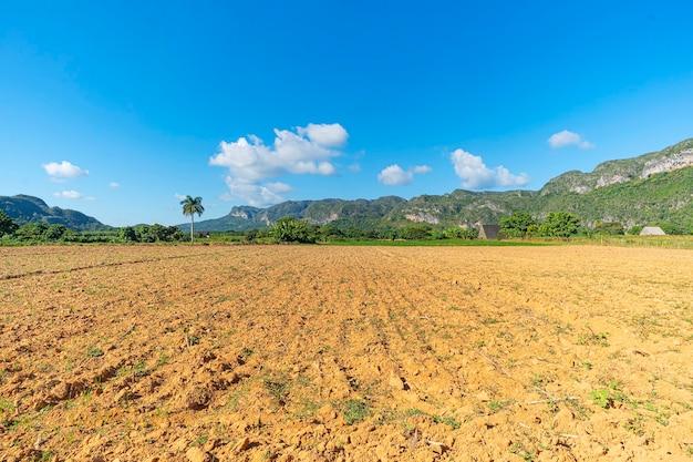 Boerderij veld. vers geplant tarweveld in het amerikaanse midwesten.