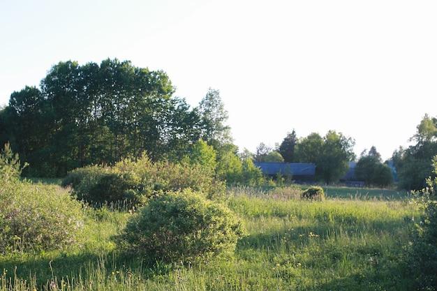 Boerderijlandschap buiten in zonsondergangtijd