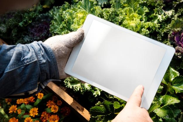 Boeren brengen verse producten op de markt om te verkopen
