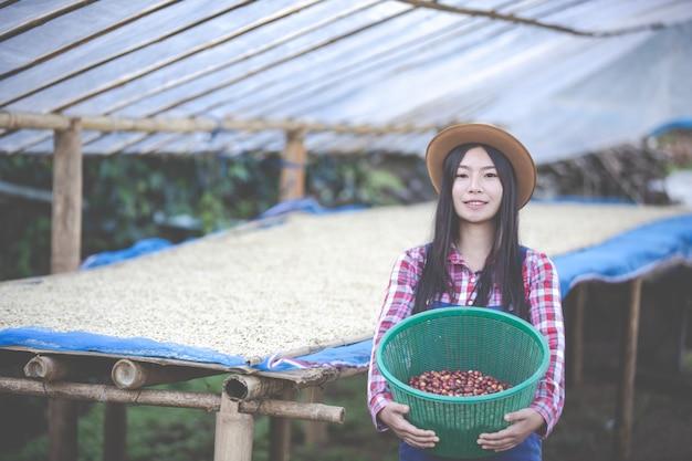 Boeren die vrouwen laten groeien, zijn blij om de koffiebonen te drogen