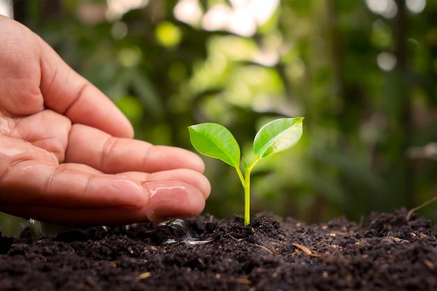 Boeren geven kleine plantjes met de hand water met het concept van wereldmilieudag.
