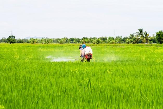 Boeren pesticiden in de velden