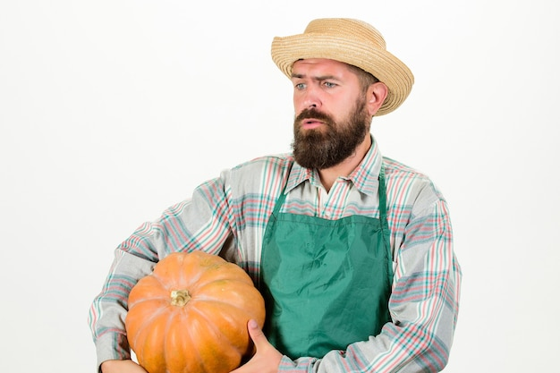 Boeren strohoed draagt een grote pompoen. landbouw en landbouw. landbouw zaden meststof en oogst. landbouwconcept. man bebaarde rustieke boer dragen schort presenteren pompoen witte achtergrond.