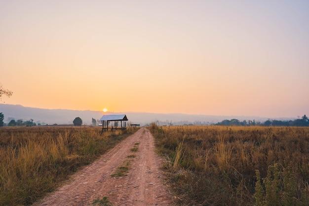 Boerenhut in het rijstveld langs de landelijke weg bij zonsopgang.