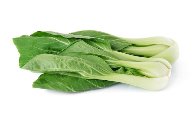 Bok choy groente op het wit wordt geïsoleerd dat.