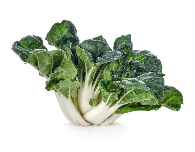 Bok choy groente op het wit wordt geïsoleerd dat