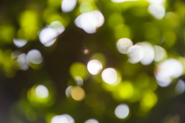 Bokeh natuurlijke groene onscherpe achtergrond.