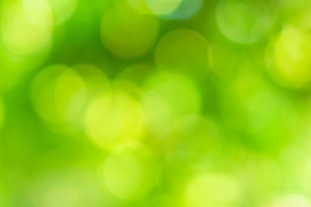 Bokehcirkels vaag van groen natuurlijk licht