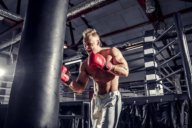 Bokser die traint op een bokszak in de sportschool.