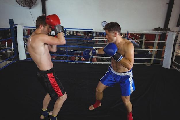 Boksers vechten in boksring