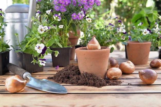 Bol van bloemen in een bloempot tussen bloemen en vuil op een tuintafel