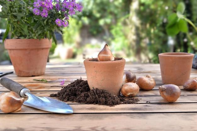 Bol van bloemen in een terracotta pot onder vuil op een houten tuintafel