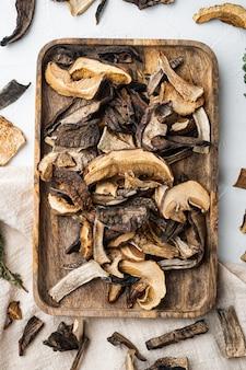 Boletus wilde gedroogde paddenstoelen set, op wit