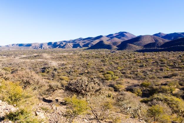 Boliviaans bergenlandschap, bolivia.road van potosi naar tupiza
