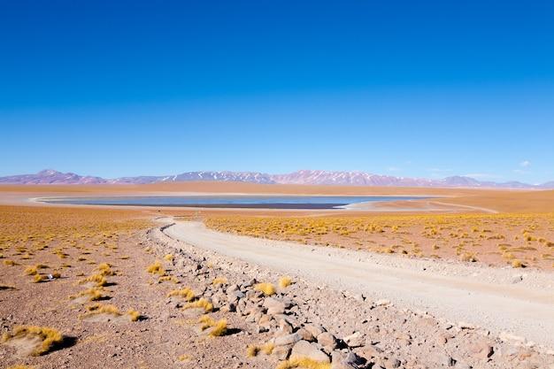 Boliviaanse lagunemening, bolivië. kollpa kkota lagune uitzicht. collpa laguna