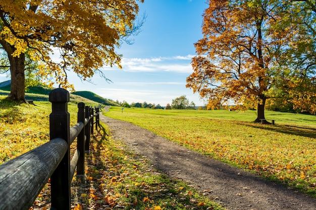 Bomen dichtbij de weg met de heuvels in de herfst